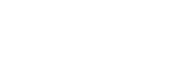Blue Dolphin Charters